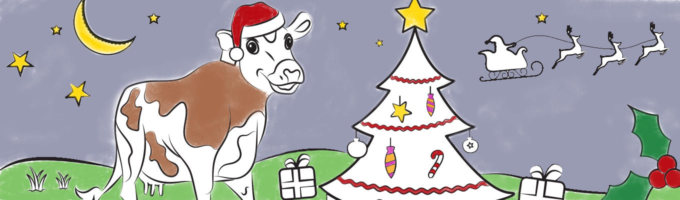 Colour In Banner 1360X400 Christmas